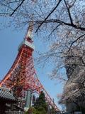东京铁塔驻地 库存照片