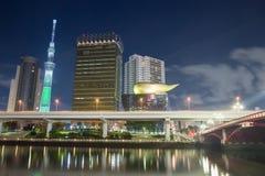 东京,日本地平线夜 库存照片