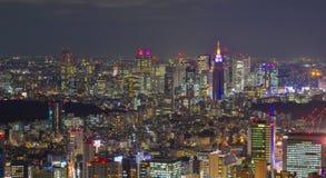 东京,日本夜场面  免版税库存照片