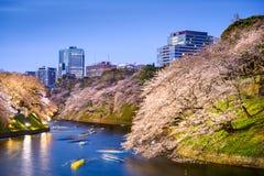 东京,日本春天护城河 库存图片