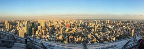 东京,日本鸟瞰图  免版税库存照片