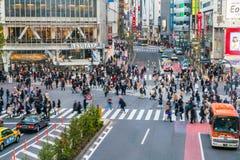 东京,日本, 2016年11月17日:城市街道涩谷横穿与 免版税库存图片