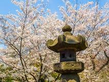 东京,日本- 2017年8月24日:关闭享受樱花节日的人岩石雕象在上野公园 图库摄影