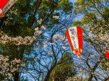 东京,日本- 2017年8月24日:关闭japanesse信件ins一lanter,垂悬在樱花节日期间 库存照片