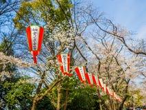 东京,日本- 2017年8月24日:关闭japanesse信件ins一lanter,垂悬在樱花节日期间 图库摄影