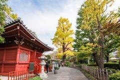 东京,日本- 2017年10月31日:大厦的看法在寺庙的疆土的 复制文本的空间 库存照片