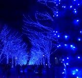 东京,日本- 2017年12月28日:涩谷蓝色隧道或Ao没有Dokutsu照明在涩谷公园街道上举行 库存照片