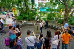 东京,日本2017年6月28日- :未认出的人民在涩谷,东京参观Hachiko狗雕象 Hachiko是一条著名狗 免版税图库摄影