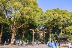 东京,日本- 2016年11月20日访客走的代代木公园在原宿区,一个主要旅游胜地在东京,日本 免版税库存照片