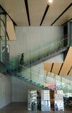 东京,日本- 2013年11月24日:人参观Nezu博物馆在东京 免版税库存图片