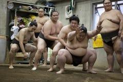 东京,日本- 2016年5月18日:在他们的摊位的日本相扑摔跤手训练在东京 库存照片