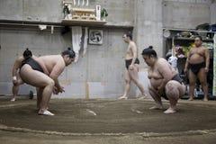 东京,日本- 2016年5月18日:在他们的摊位的日本相扑摔跤手训练在5月18日的东京 2016年 图库摄影