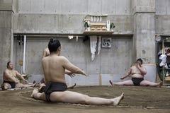 东京,日本- 2016年5月18日:在他们的摊位的日本相扑摔跤手训练在5月18日的东京 2016年 免版税库存照片