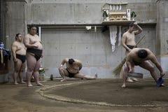 东京,日本- 2016年5月18日:在他们的摊位的日本相扑摔跤手训练在5月18日的东京 2016年 库存照片