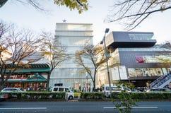 东京,日本- 2013年11月24日:购物在Omotesando街道上的游人 库存照片