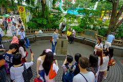 东京,日本2017年6月28日- :未认出的人民在涩谷,东京参观Hachiko狗雕象 Hachiko是一条著名狗 免版税库存图片