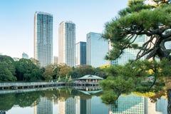 东京2015年11月28日:东京都市风景看法与公园,亚帕的 免版税库存图片