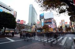 东京- 11月28 :横渡石牌的中心人人群  图库摄影
