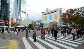 东京- 11月28 :横渡石牌的中心人人群  库存图片