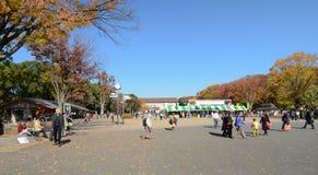 东京- 11月22 :访客在上野公园享用 库存照片