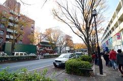 东京- 11月24 :购物在表参道之丘的人们 图库摄影