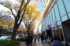 东京- 11月24 :购物在表参道之丘附近的人们 库存图片