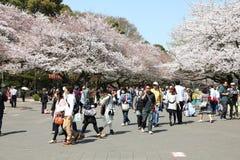 上野公园 库存照片