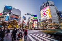 东京- 11月28 :Shibuy著名的横穿的步行者  免版税库存图片