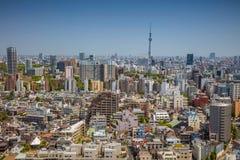 东京 库存照片