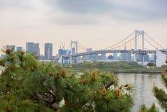 东京 Odaiba 彩虹桥 免版税库存图片