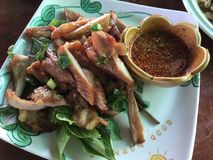 东北镇泰国食物 图库摄影