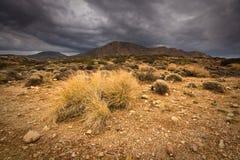 东南克利特,希腊风景。 免版税图库摄影