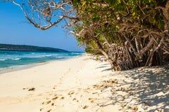 东帝汶白色沙子海滩 图库摄影