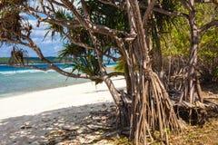 东帝汶白色沙子海滩 免版税图库摄影