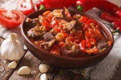 东方烹调:产小羊慢炖与菜在一个碗克洛 图库摄影