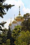 东正教的金圆顶 免版税库存照片