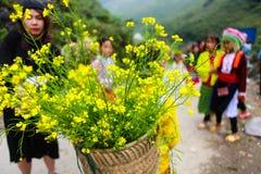 东范,河江市,越南, 2017年11月14日, :未认出的少数族裔哄骗与油菜籽花篮子在Hagiang 库存照片