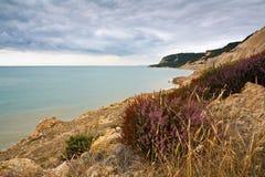 东萨塞克斯郡海岸,英国 免版税库存图片