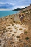 东萨塞克斯郡海岸,英国 免版税图库摄影