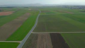 东部斯洛文尼亚,德拉瓦河河的农村乡下平原,Panonnian平地,传统小领域 股票视频