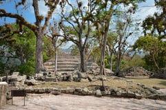 东部法院结构在玛雅人文明Copan考古学站点的在洪都拉斯 免版税库存图片