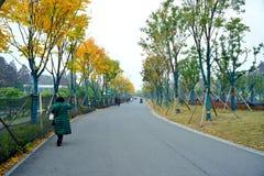 东部湖绿色路 库存图片