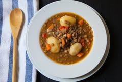 东部食物黎巴嫩扁豆中间名汤 库存照片