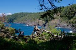 东部Sooke公园坚固性海岸线在一个晴天 免版税图库摄影