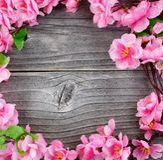 丝绸樱花圈子在overhe的葡萄酒木头分支 免版税库存照片