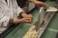 丝绸加工厂中国 库存照片