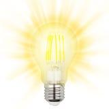 细丝LED电灯泡 免版税库存照片