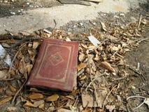 丢失的书 免版税库存图片