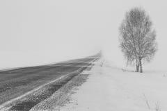 丢失的冬天路在冷淡的雾和暴风雪 免版税图库摄影