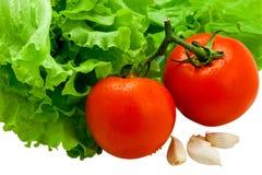 丢弃新鲜的查出的鲜美蔬菜 免版税图库摄影